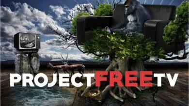 Photo of La mejor VPN para Project Free TV: 4 opciones principales en 2020