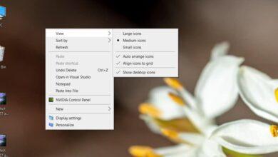 Photo of Cómo cambiar el tamaño de los iconos del escritorio en Windows 10