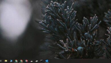 Photo of Cómo minimizar Outlook para Office 365 en la bandeja del sistema en Windows 10