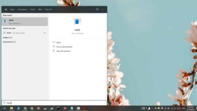 Photo of Cómo abrir archivos del subsistema de Windows para Linux en Windows 10