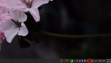 Photo of Cómo ver el porcentaje de batería en la bandeja del sistema en Windows 10