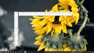 Photo of Cómo agregar una regla a la pantalla en Windows 10