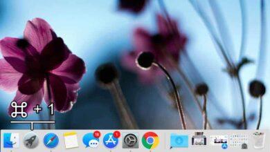 Photo of Cómo iniciar aplicaciones Dock con teclas de acceso rápido en macOS