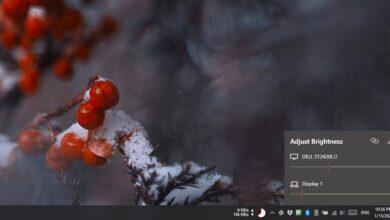 Photo of Cómo administrar el brillo para varios monitores desde la bandeja del sistema en Windows 10