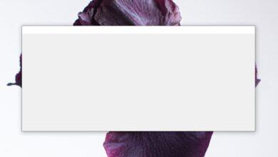 Photo of Cómo ocultar una aplicación al compartir su pantalla en Windows 10