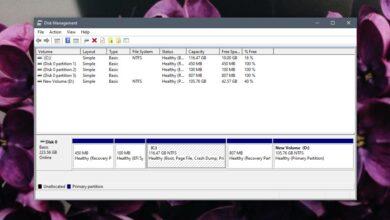 Photo of Cómo eliminar la partición en Windows 10 (múltiples opciones)