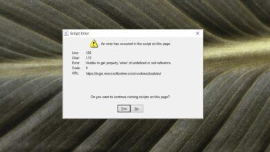 Photo of REVISIÓN: Se ha producido un error en el script de esta página (Microsoft Teams)