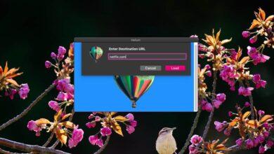 Photo of Cómo obtener Picture in Picture para sitios web en macOS