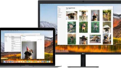 Photo of Cómo arreglar Night Shift no funciona en monitores externos en macOS