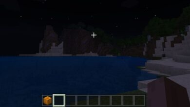 Photo of Minecraft sigue fallando: cómo solucionar el bloqueo de Minecraft