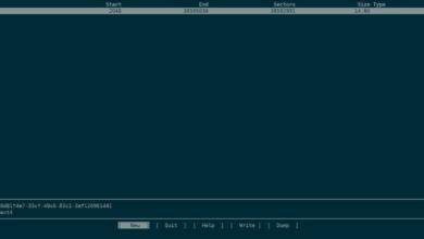 Photo of Cómo usar el espacio de intercambio en una unidad USB en Rasbian Linux