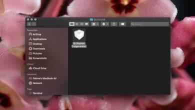 Photo of Cómo instalar un complemento en QuickLook en macOS