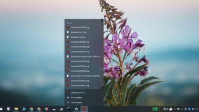 Photo of Cómo ocultar elementos recientes para aplicaciones en Windows 10