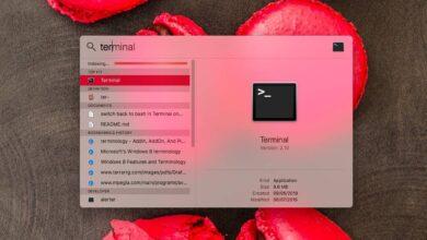 Photo of Cómo arreglar Spotlight atascado en la indexación en macOS