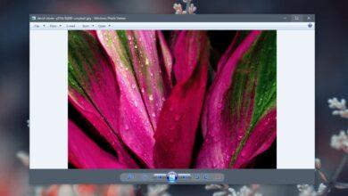 Photo of Las imágenes en el visor de fotos de Windows no giran (SOLUCIÓN)